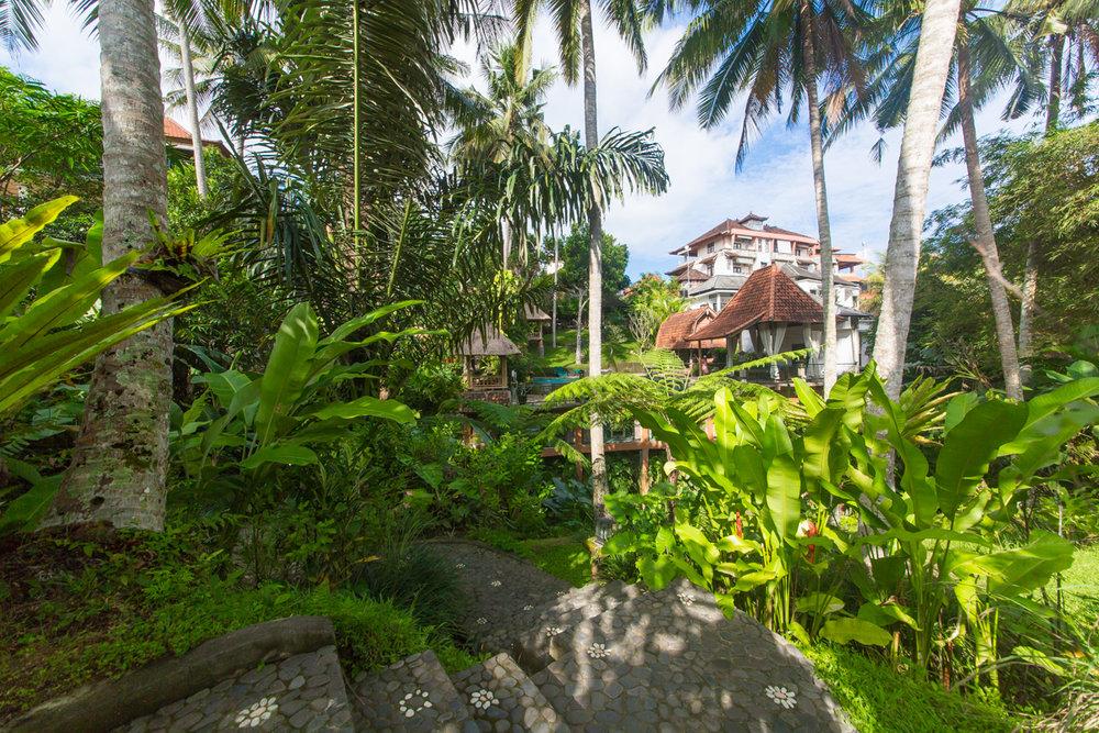Bali-47.jpg