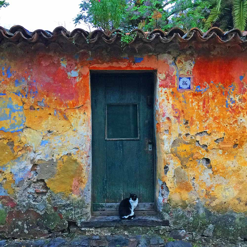 The rich, rustic colors of Colonia Del Sacramento. Isn't there something lovely and characterful about these time-worn walls?