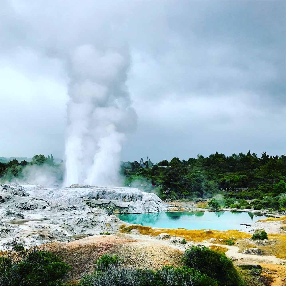 The impressive geyser at Whakarewarewa, erupting.