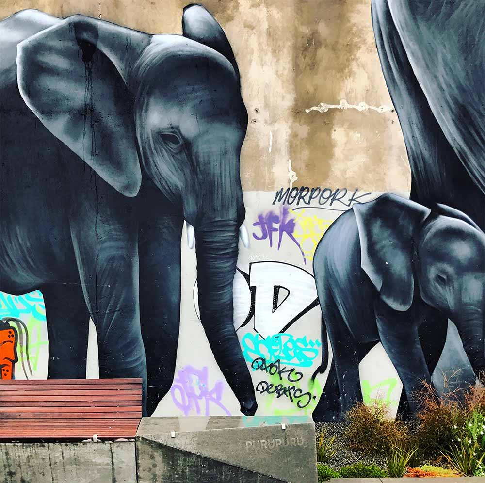 I thought this elephant mural was so beautiful, echoing the city's slow and steady path to recovery.