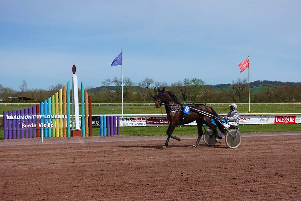 Harness racing at our local racetrack.