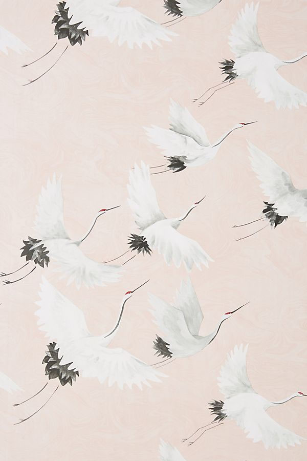 Pink Crane