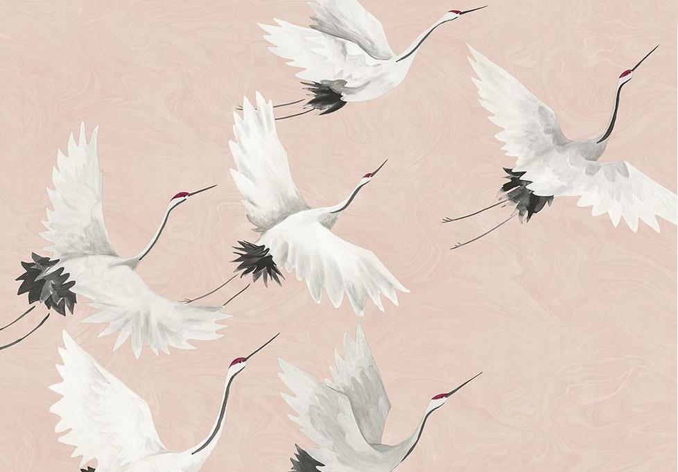Pink Cranes.jpg