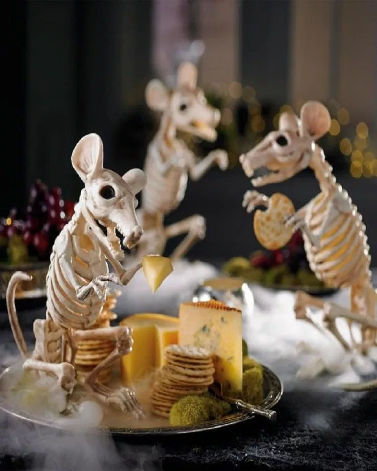 Skeleton Rat Cheese