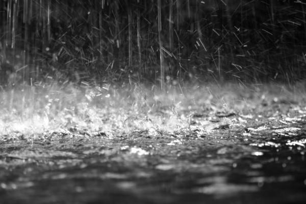Rain (Small)
