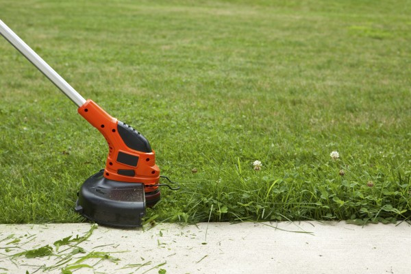 Weed Trimmer Cutting Grass