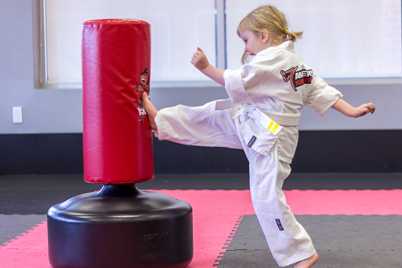 American Karate Dragons - Lucy kicking
