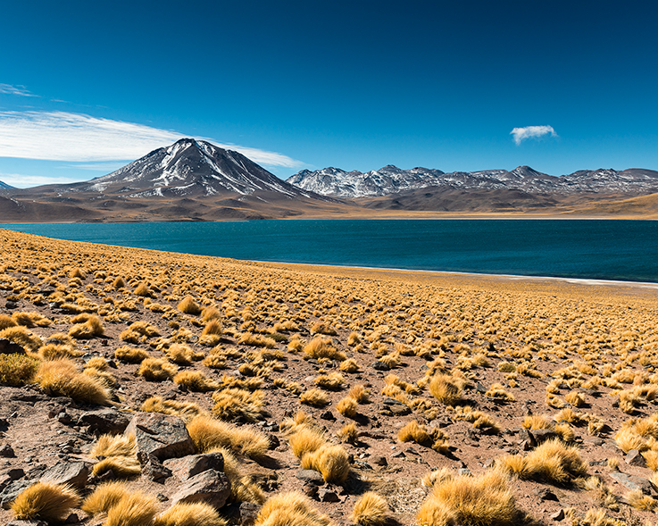 Atacama by Richard Cavalleri