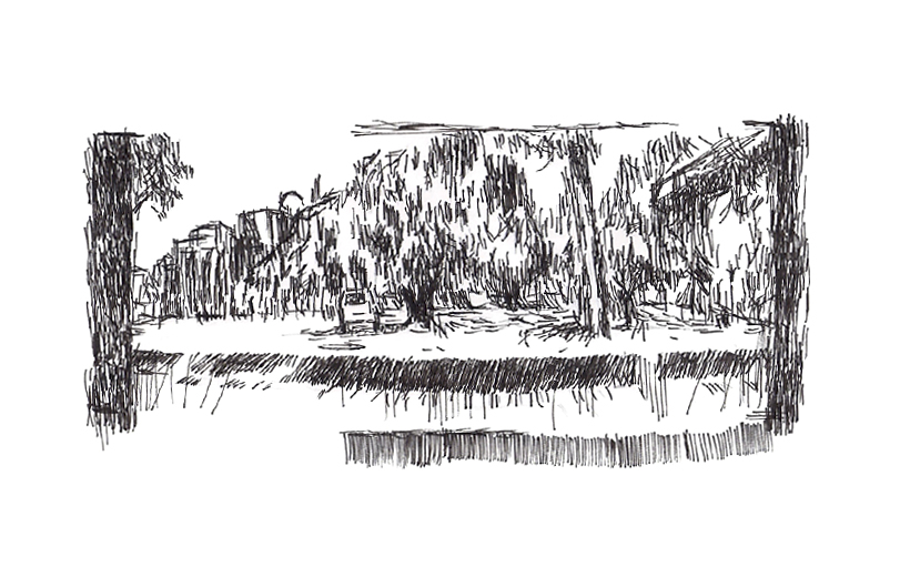 Drawing en plein eir. Curtin University, 2010.