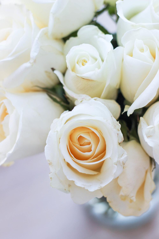 dear-serendipity-roses.jpg