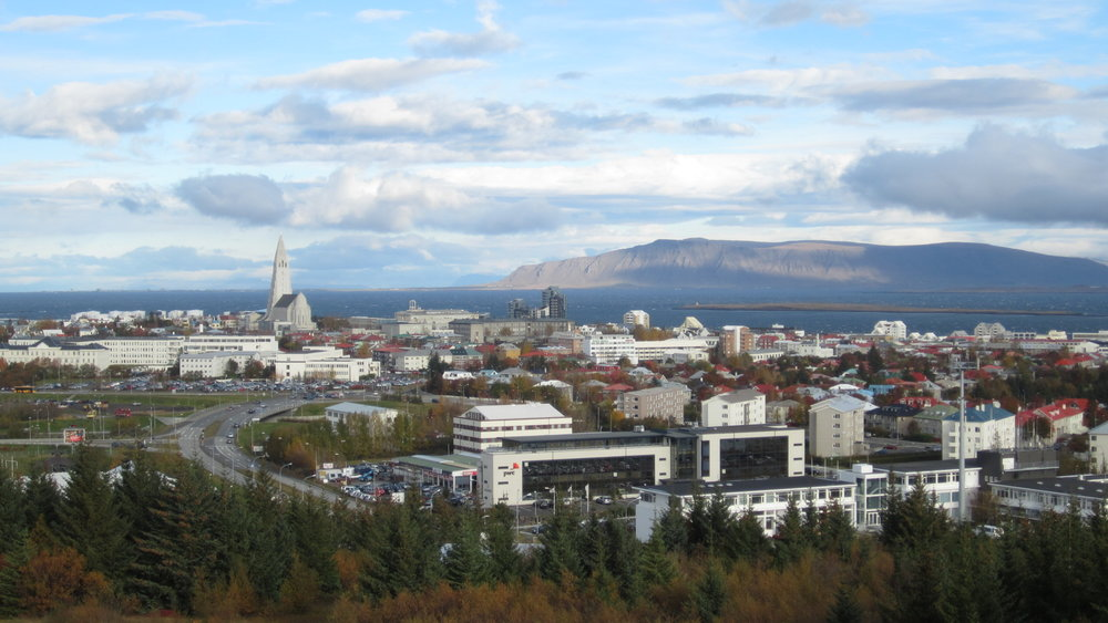 Cityscape - View from Perlan.jpg