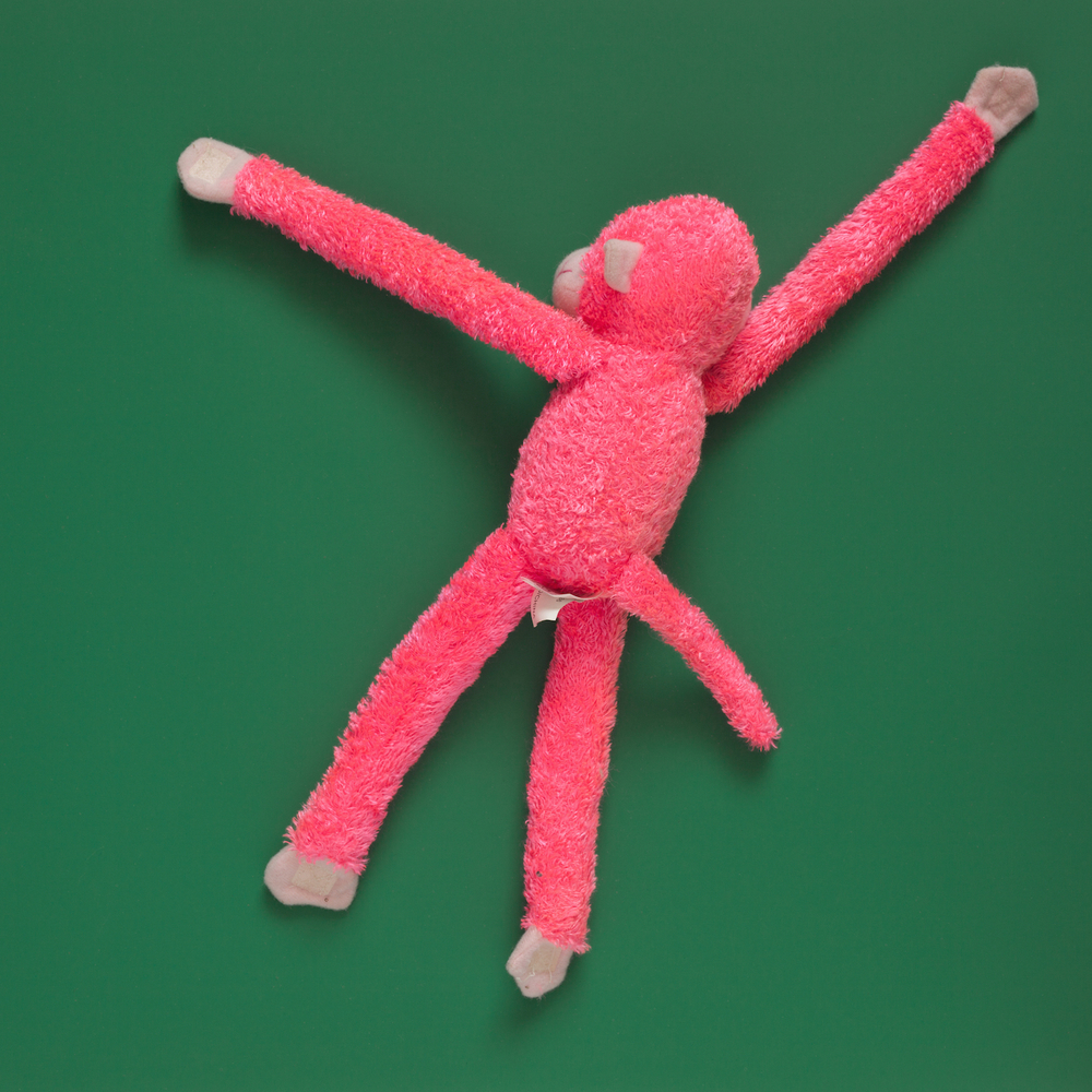 Pink Monkey Buddy