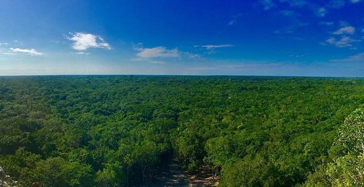 Riviera Maya Quintana Roo Mexico