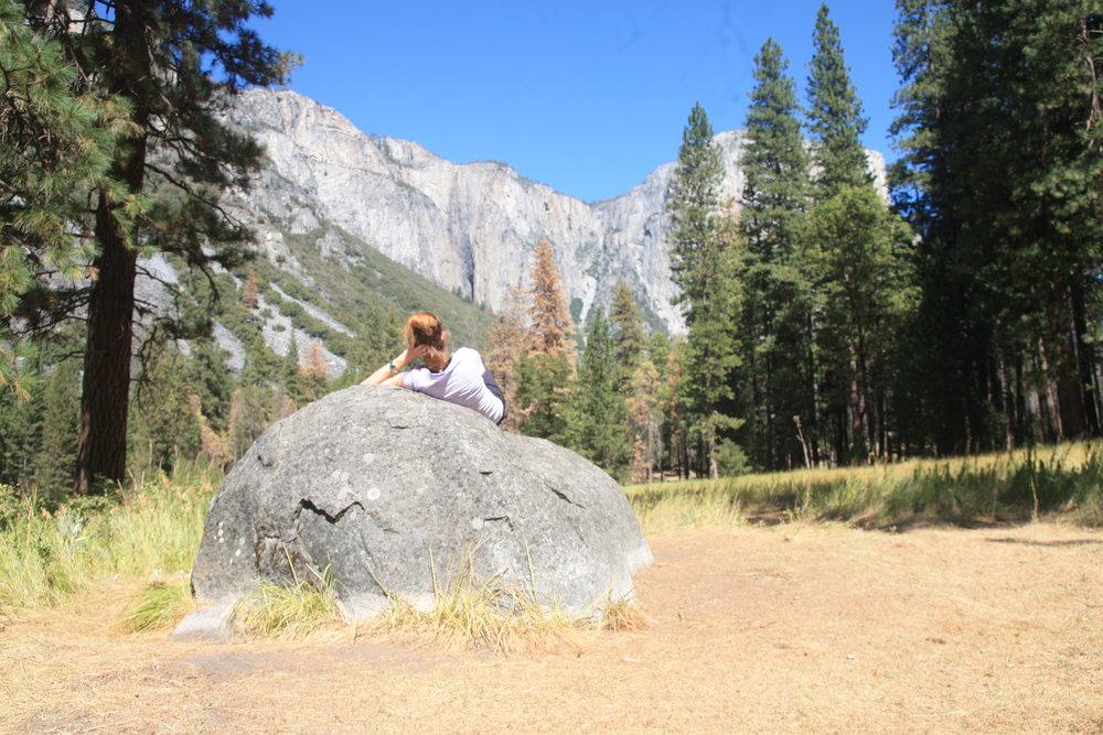 Yosemite Ecotourism with green Maya