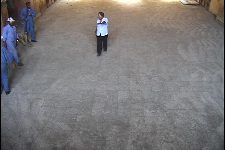 IIoana-Georgescu-Dust-Balai.jpg