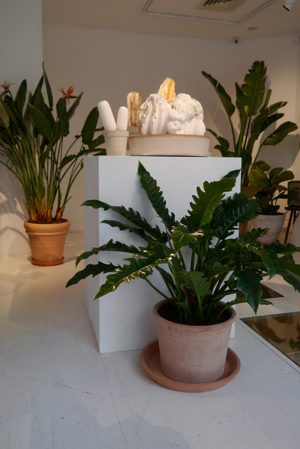 Conservatory-40.jpg