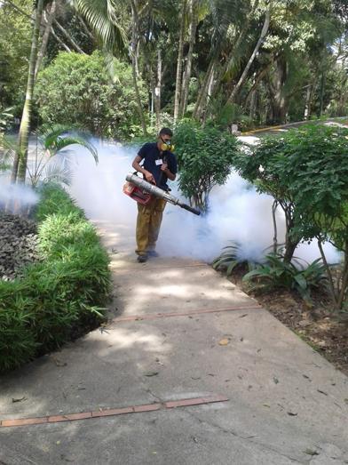 Fumigacion 1.png