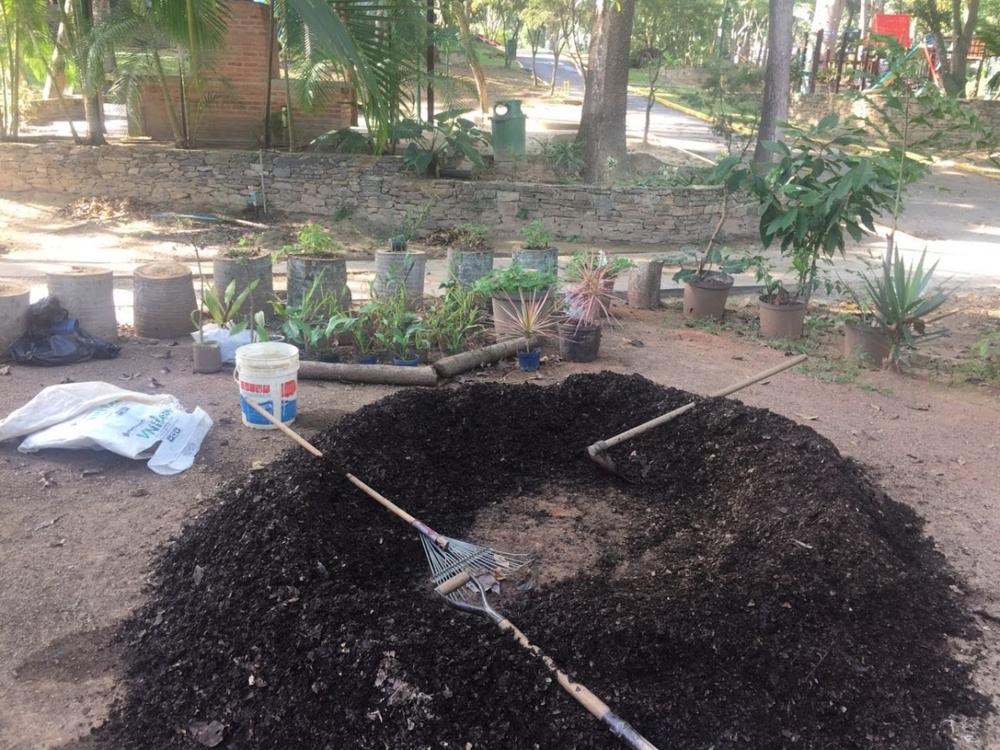 Jardineria 6.png