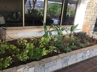 Mantenimiento Jardineria 1.JPG