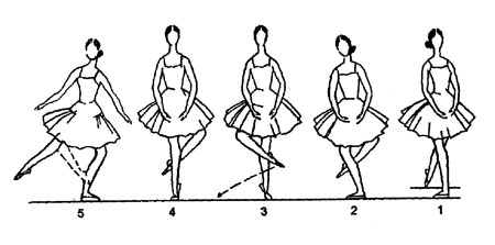 Illustration from:  Technical Manual and Dictionary of Classical Ballet  by Gail Grant