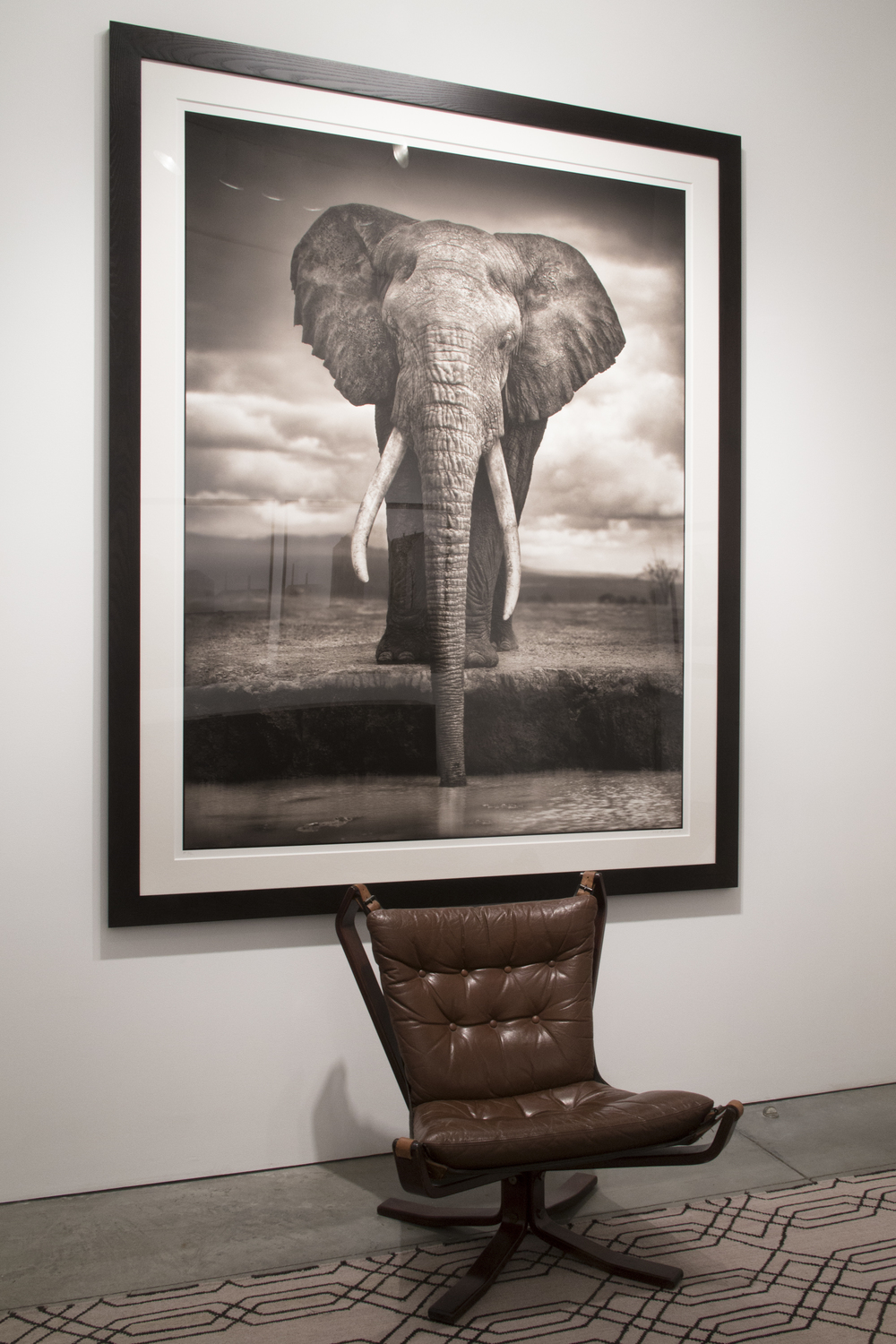 Office Installation with contemporary photography