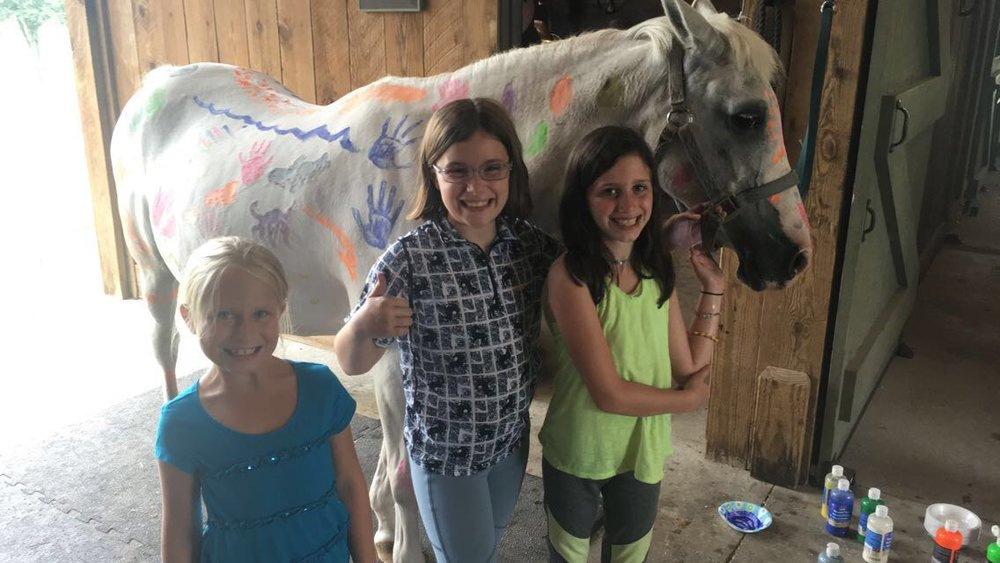 Camps - Camp days are held during the summer, holidays, and school breaks.  These fun-filled days give riders the chance to express their love of horses through various art projects, horsemanship sessions, and of course daily riding lessons.  Children build on teamwork skills through games and competitions, and study the importance of care of horses.  Summer Camp 2017 registration can be completed online through Frederica Academy.