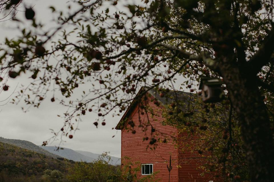 barn_apples_mtns_kgwedding.jpg