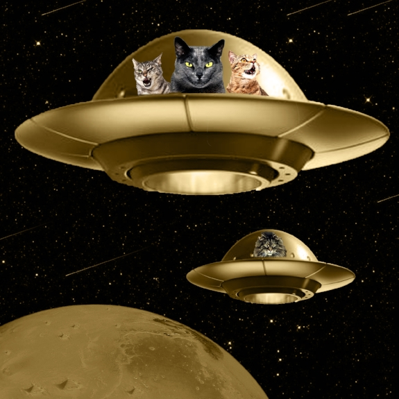 Cats are Aliens, digital collage, 2017