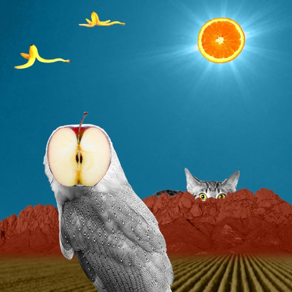 Owl I Want Is You , digital collage, 2017