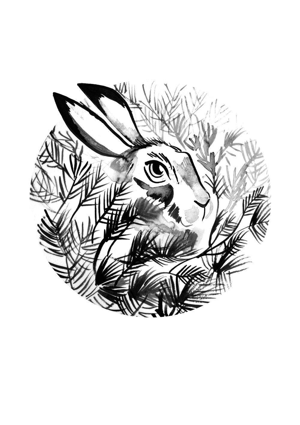 28.-hare_giclee_b&w_a4_potter.jpg