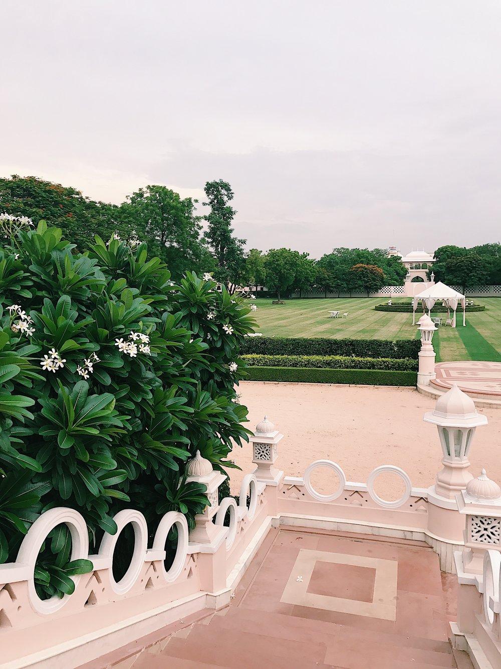 Wondering the Gardens