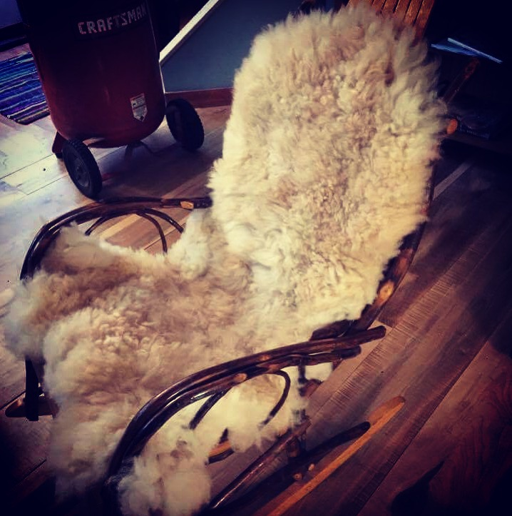 Cozy Sheepskins - Are available each year in various colors and sizes. They are processed locally using natural methods. They are the perfect addition to your couch, office chair, baby gift, pampered dog bed, or used as a bedside rug. We love these gorgeous skins and use them throughout our home.