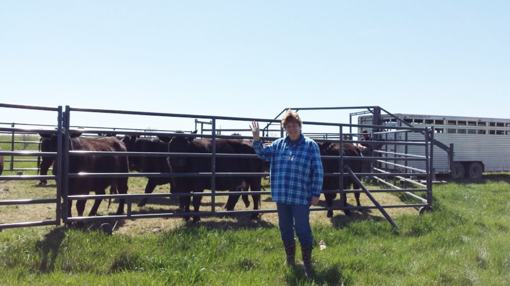 Grace Papale, playing gate girl while helping put the cows out to pasture.