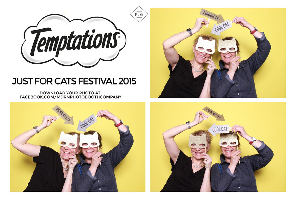 Cat Themed Photo Booth