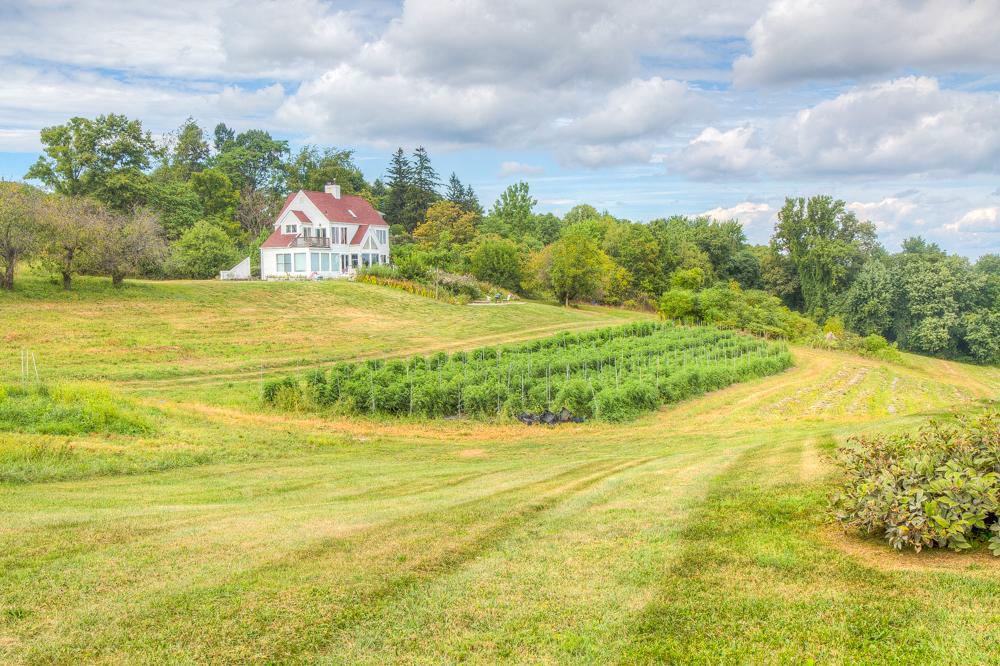 Hepworth Farms