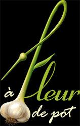 À fleur de pot (Ail de Québec)