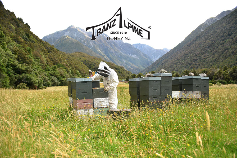 TranzAlpine Honey - 450