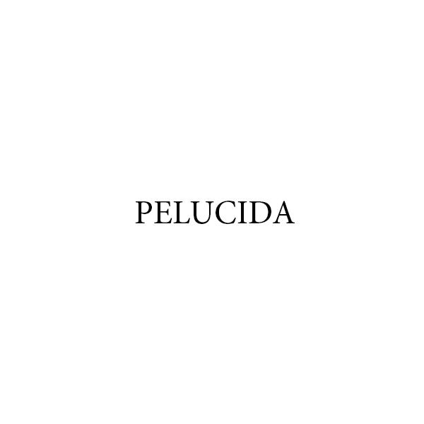 Pelucida - 600.jpg