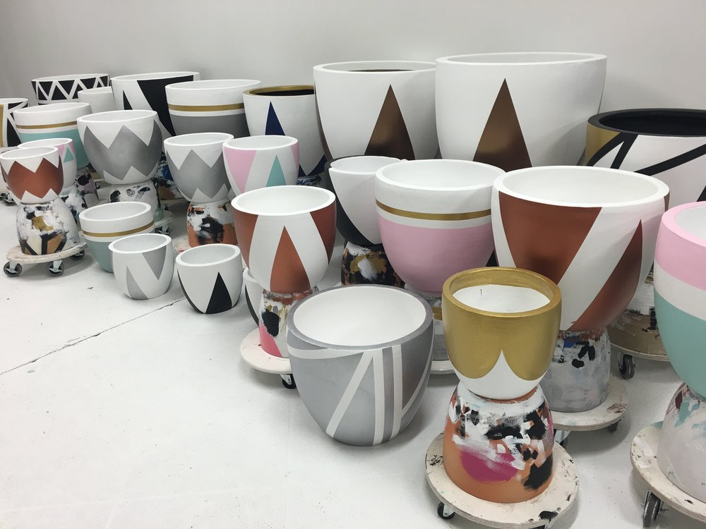 Finished pots .jpg