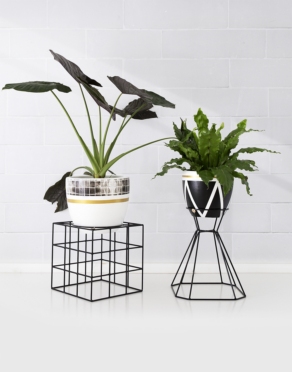 THE HULK PLANT STAND — ARC + FAMILY