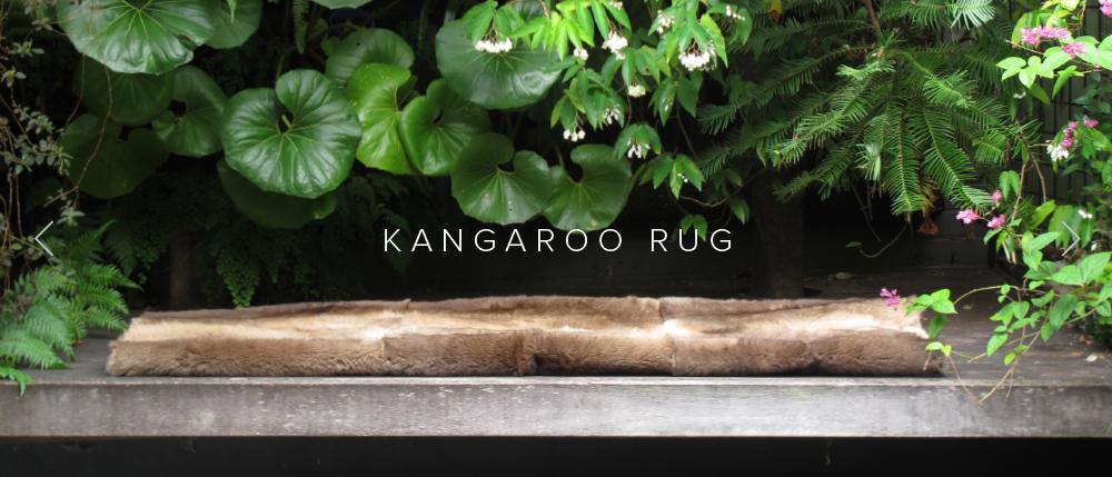 Banner_Kangaroo_2.jpg