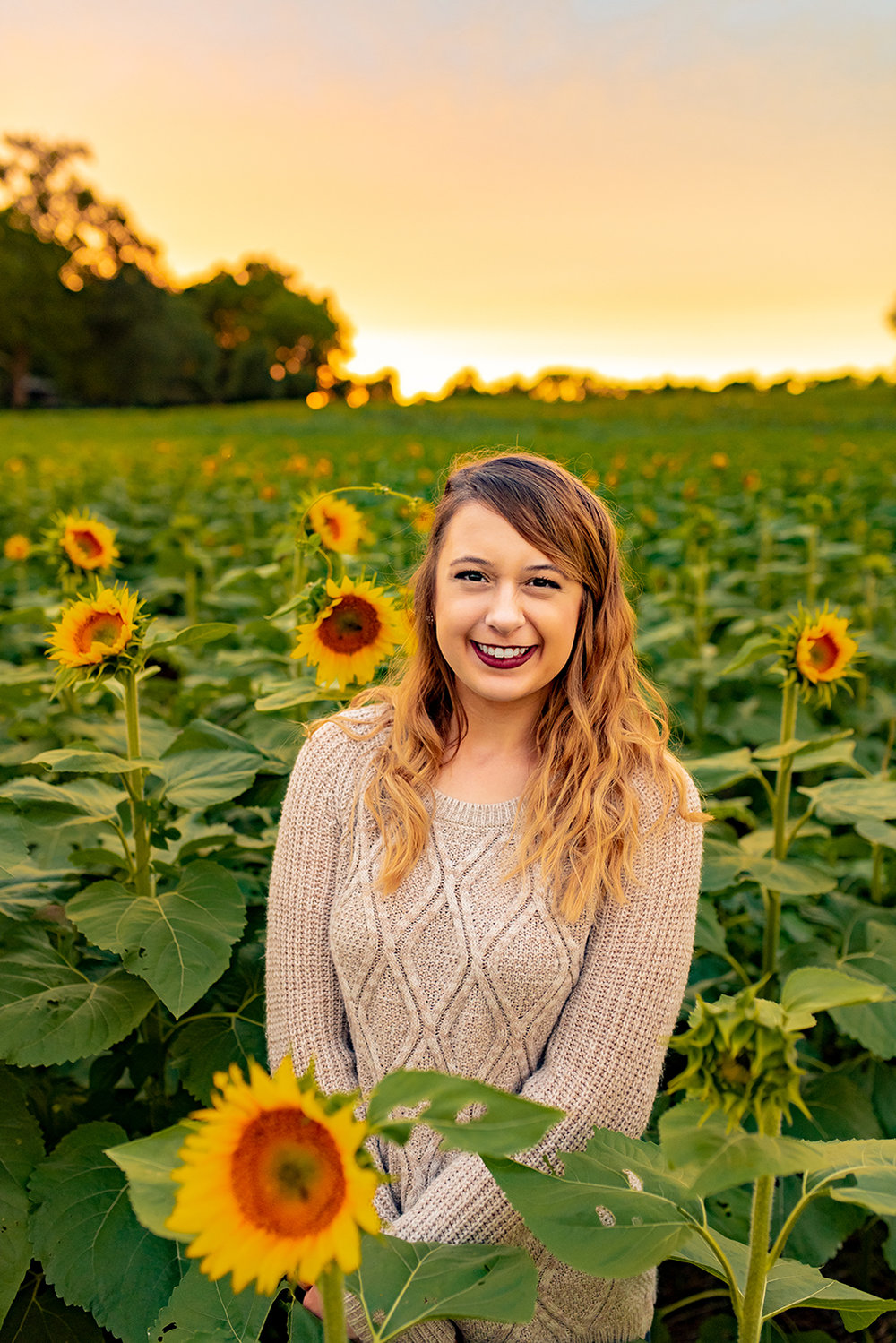 Mandy Reno: Design Extraordinaire, Sunflower Model