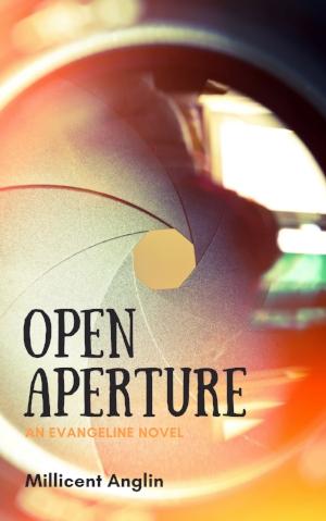 OpenAperture.jpg