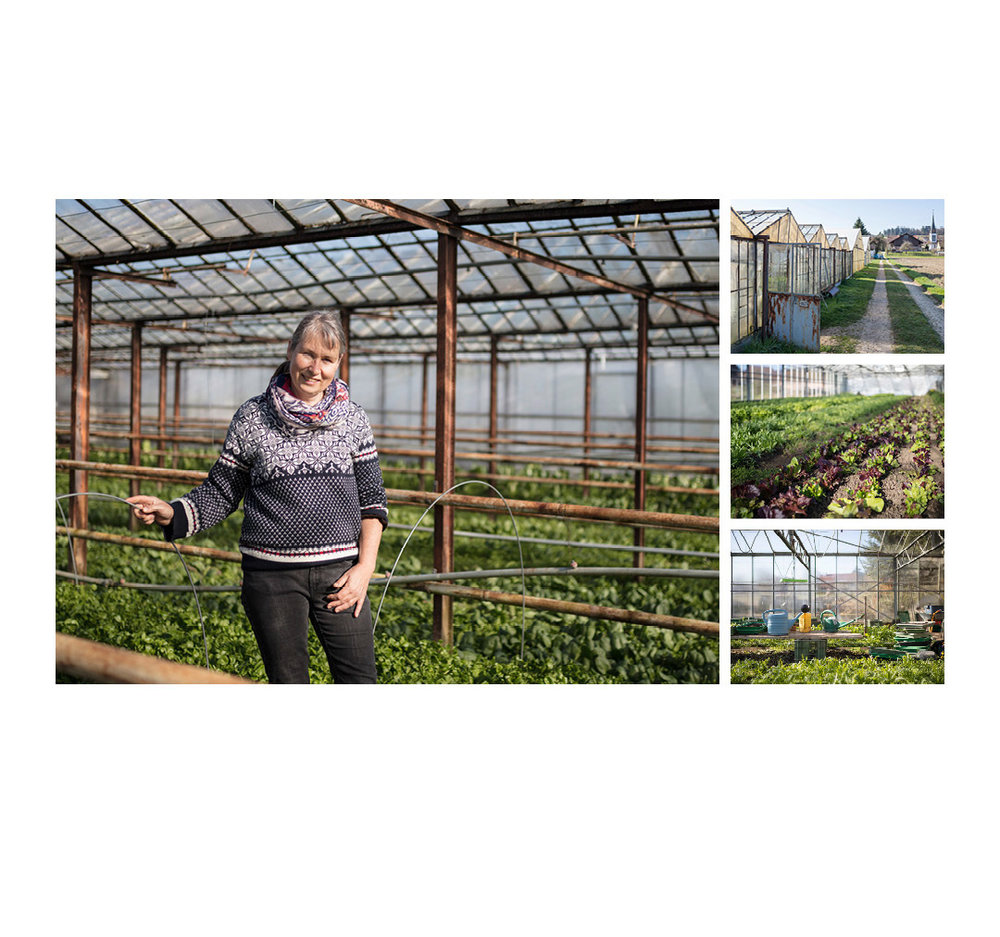 Landwerker & Gaumenfreunde  wo die Schlosshalde einkauft  Portraits von Produzenten für das  Gasthaus Schlosshalde     Kerstin te Heesen, Gemüsehaus Thalheim