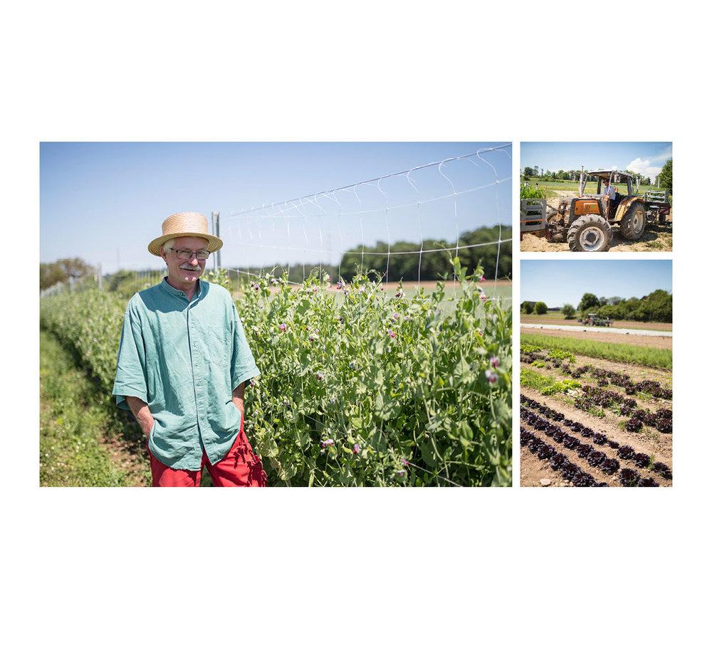 Landwerker & Gaumenfreunde  wo die Schlosshalde einkauft  Portraits von Produzenten für das  Gasthaus Schlosshalde      Daniel Köppel, Rheinau