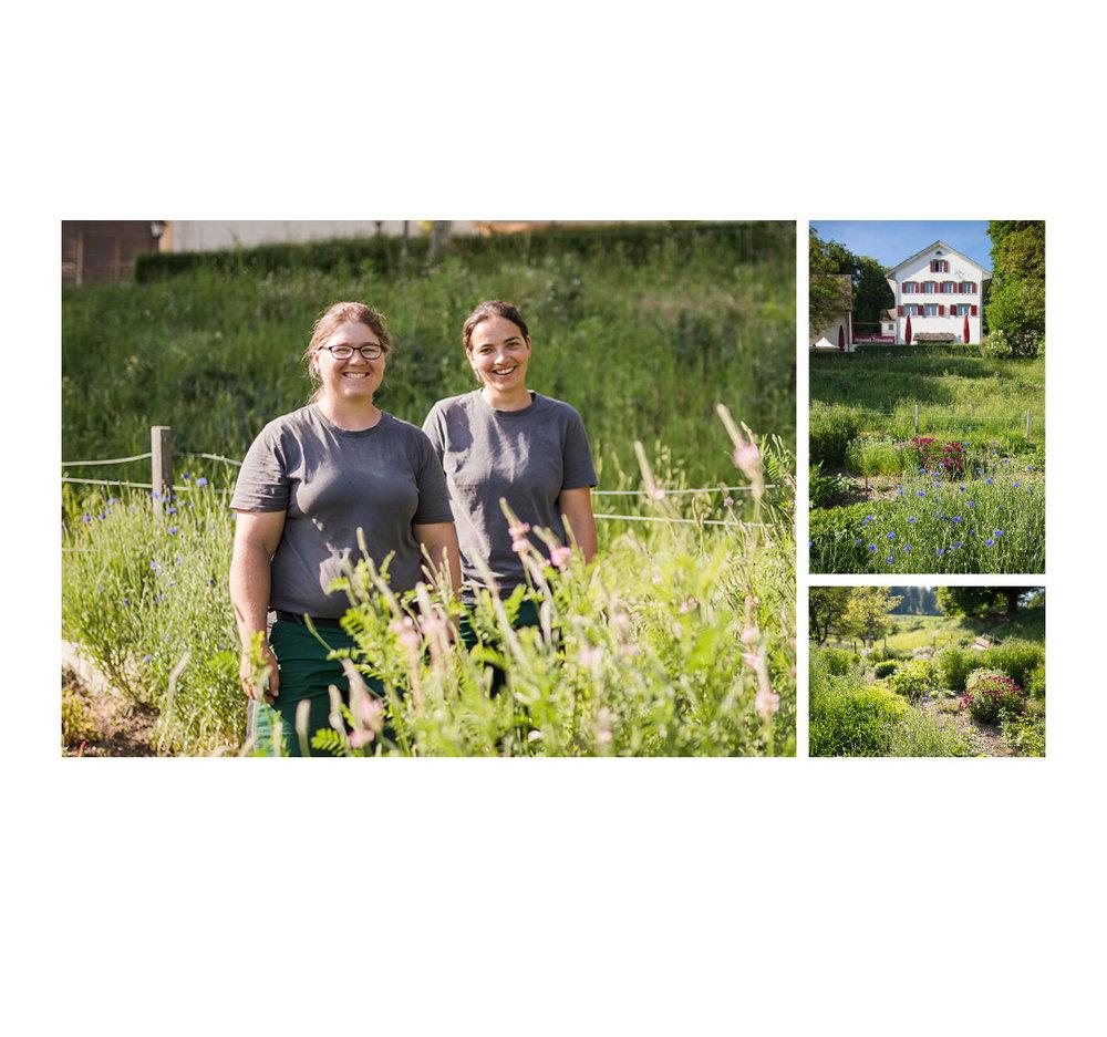Landwerker & Gaumenfreunde  wo die Schlosshalde einkauft  Portraits von Produzenten für das  Gasthaus Schlosshalde      Silja Lieberherr, Maria Aeberhard, Winterthur
