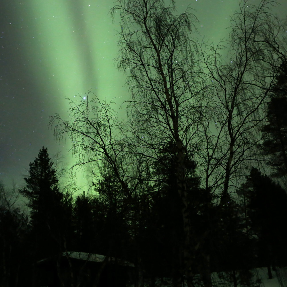 Aurora borealis at Inarijärvi Finland, by Manfred Werner - Tsui / Creative Commons / Wikimedia Commons