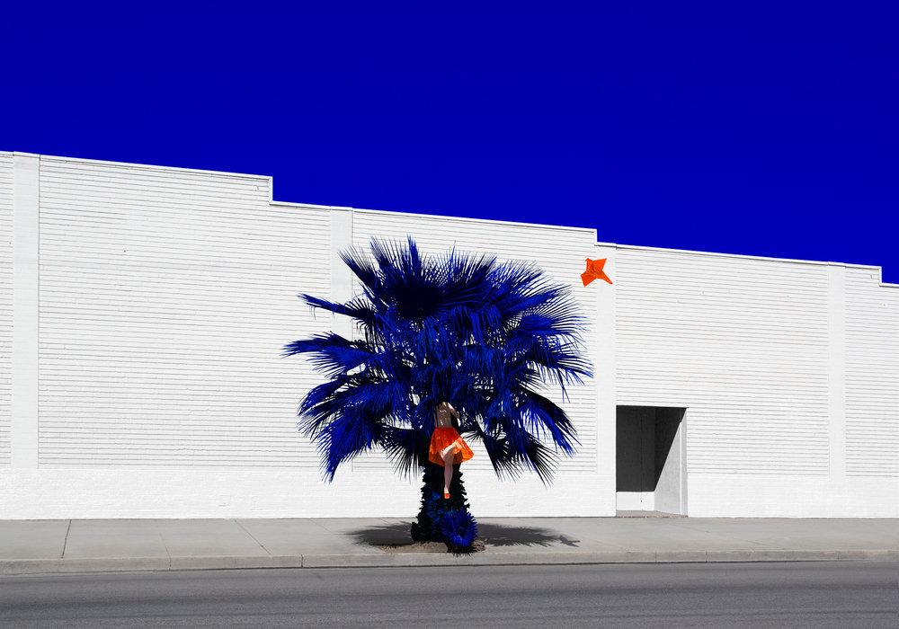 Galerie hug -Reine Paradis -palm -2015.jpg