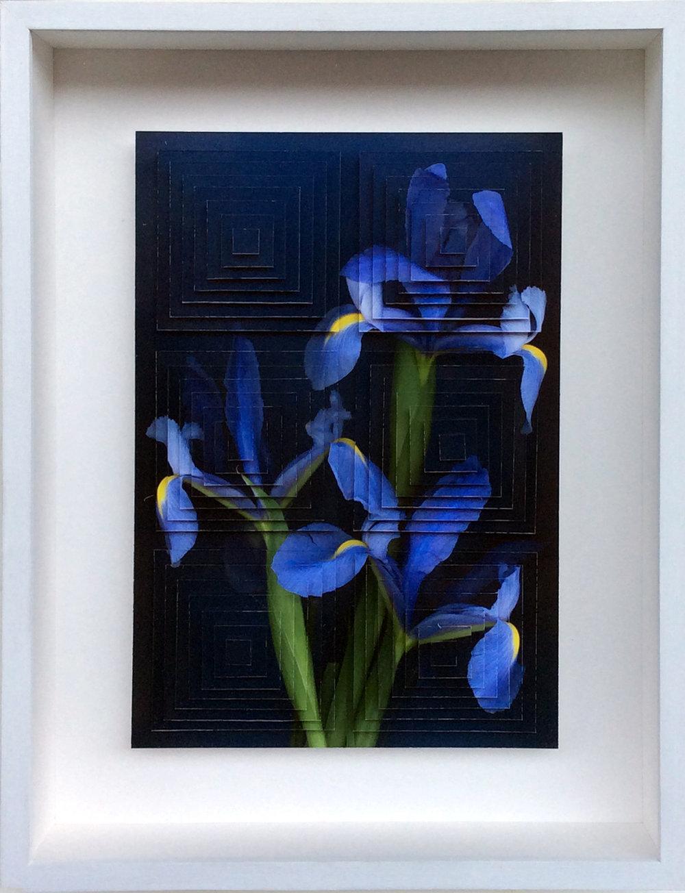 3. Galleria-l'Affiche_Alfred-Drago-Rens_Fiore (9)_2015 - 33,2x25,7 cm.jpg