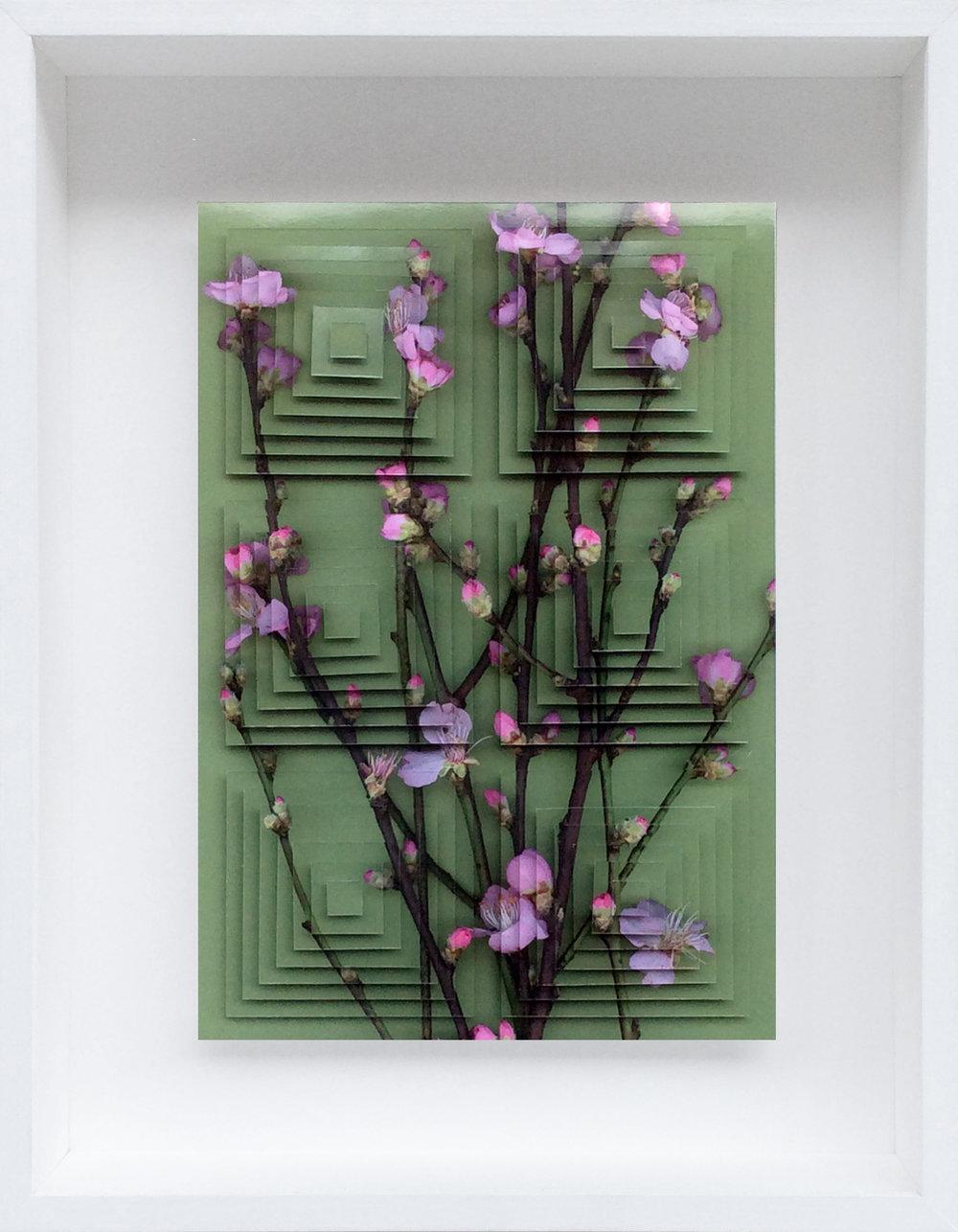 5. Galleria-l'Affiche_Alfred-Drago-Rens_Fiore (15)_2015 - 33,2x25,7 cm.jpg